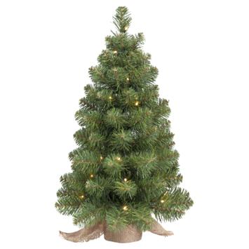 Kunstkerstboompje Dakota 60 cm