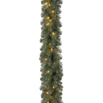 Guirlande Dakota inclusief LED