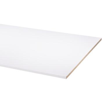 Meubelpaneel wit 250x80 cm 18 mm
