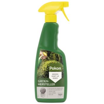 Pokon Buxus Groen 500 ml