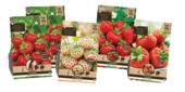 Aardbeienpakket