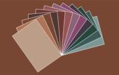 GAMMA Kleurkaartset Warm & Sfeervol 12 stuks