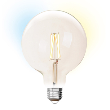 iDual globe E27 wit filament