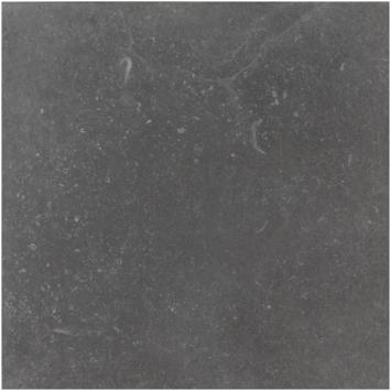 Vloertgel/wandtegel Vinstra Blu 60x60 cm 1,08m²