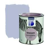GAMMA KleurID lak bloesem hoogglans 750 ml