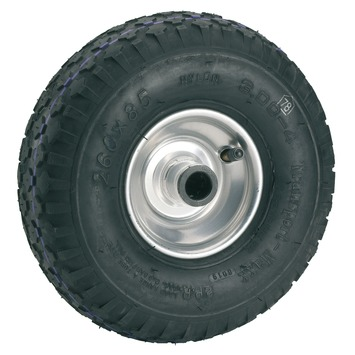 Luchtband met velg 260 mm as 20 mm maximaal 200 kg