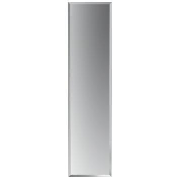 gamma plieger spiegel charleston zilver 120x30 cm kopen