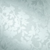 DC-fix glasfolie spring 346-8355 transparant bloem 67,5x200 cm