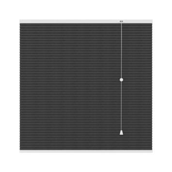 GAMMA | GAMMA plissé duo lichtdoorlatend 6003 antraciet 120x180 cm ...