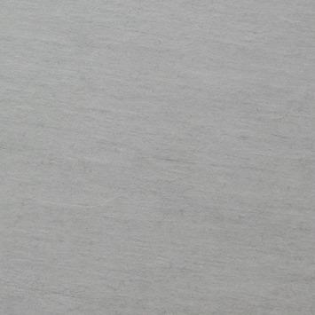 Gamma Tegels Tuin.Gamma Tuintegel Keramisch M Grijs 60x60cm 2 St Kopen