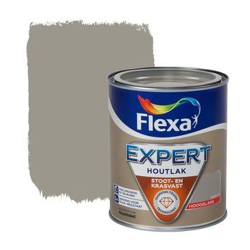 Flexa Expert lak grijsbruin hoogglans 750 ml