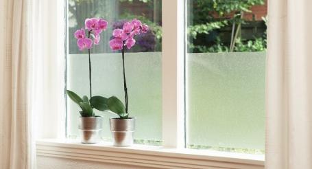 glasfolie aanbrengen gamma. Black Bedroom Furniture Sets. Home Design Ideas