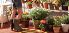Vragen over tuin - Klus Bewust