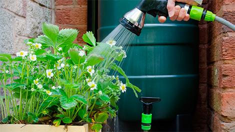 Afvoergoot Tuin Gamma : Hemelwaterafvoer: drainage in je tuin gamma